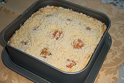 Marillen (Aprikosen) - Rahmkuchen mit feinen Streuseln 26