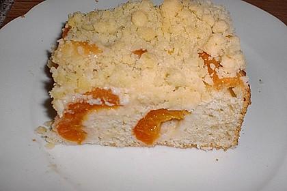 Marillen (Aprikosen) - Rahmkuchen mit feinen Streuseln 10