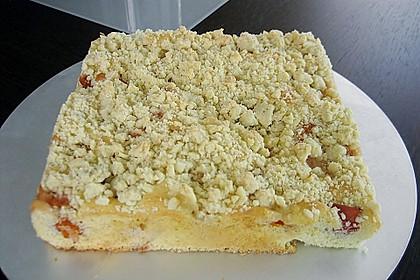 Marillen (Aprikosen) - Rahmkuchen mit feinen Streuseln 24
