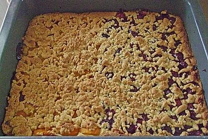 Marillen (Aprikosen) - Rahmkuchen mit feinen Streuseln 38