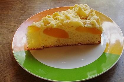 Marillen (Aprikosen) - Rahmkuchen mit feinen Streuseln 14