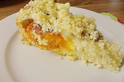 Marillen (Aprikosen) - Rahmkuchen mit feinen Streuseln 22