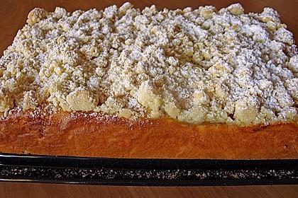 Marillen (Aprikosen) - Rahmkuchen mit feinen Streuseln 18