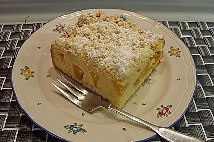 Marillen (Aprikosen) - Rahmkuchen mit feinen Streuseln 5