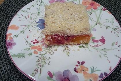 Marillen (Aprikosen) - Rahmkuchen mit feinen Streuseln 39
