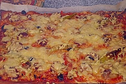Pizza al pesto rosso 13