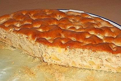 Türkischer Apfelkuchen 52