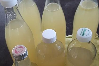 Zitronen - Sirup mit Pfefferminze und Zitronenmelisse 13
