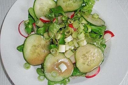 Schrats Dressing für Blattsalate 60