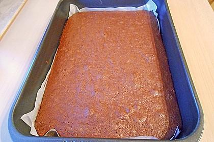 Saure Brownies 31