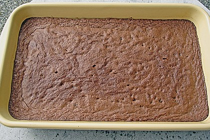 Saure Brownies 43