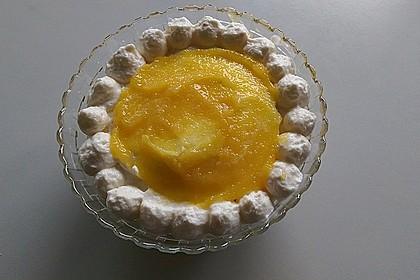 Mango - Tiramisu 17