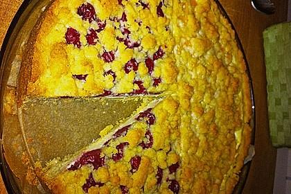 Schneller Quark-Streuselkuchen mit Obst (Bild)