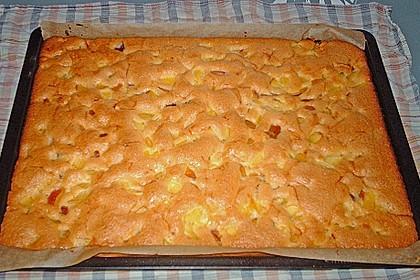 Einfacher Blechkuchen 6