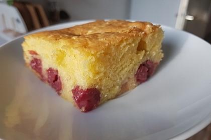 Einfacher Blechkuchen 15