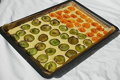Zwetschgenkuchen 6