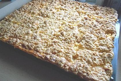 Streuselkuchen mit Mandarinen und Schmand 31
