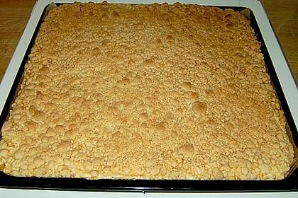 Streuselkuchen mit Mandarinen und Schmand 43