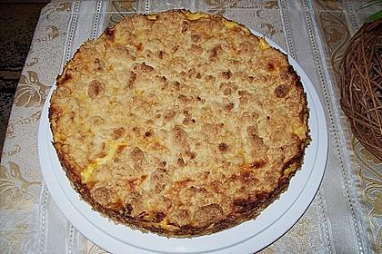 Streuselkuchen mit Mandarinen und Schmand 59