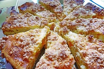Streuselkuchen mit Mandarinen und Schmand 66
