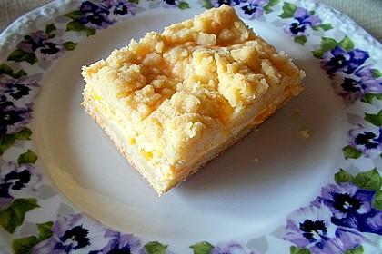 Streuselkuchen mit Mandarinen und Schmand 10