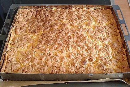 Streuselkuchen mit Mandarinen und Schmand 64