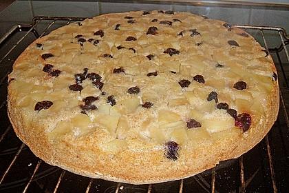 Apfelkuchen mit Cranberries (Bild)