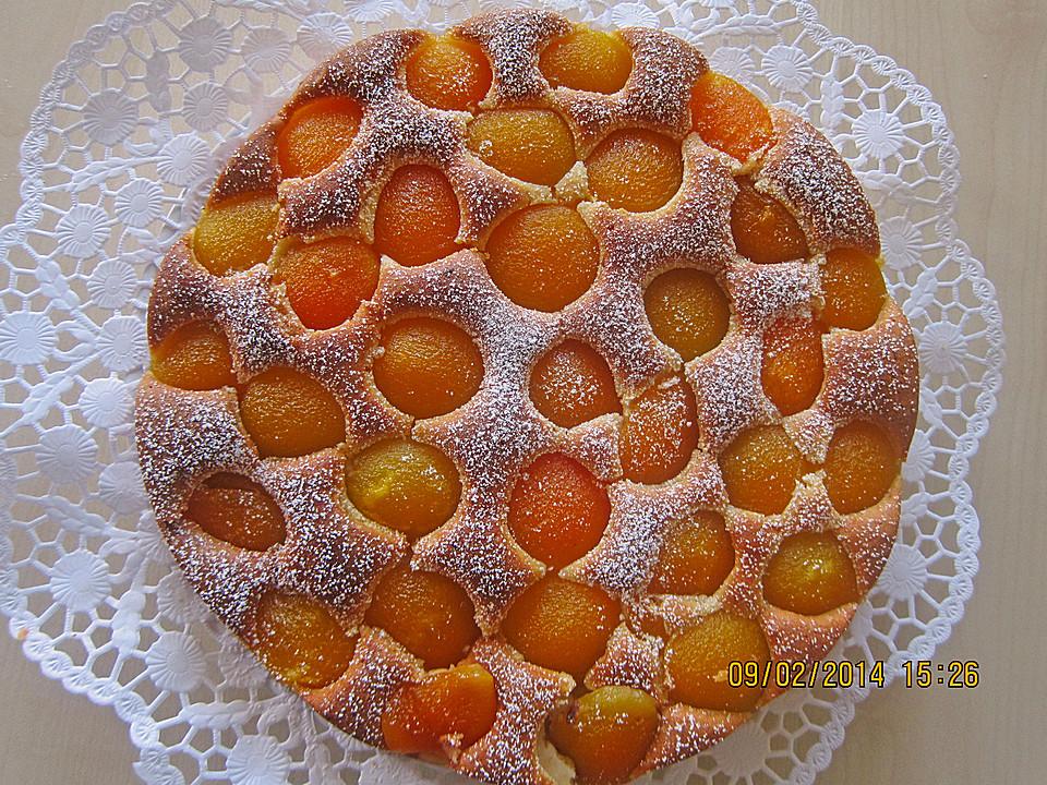 Aprikosenkuchen Der Einfachste Uberhaupt Chefkoch De