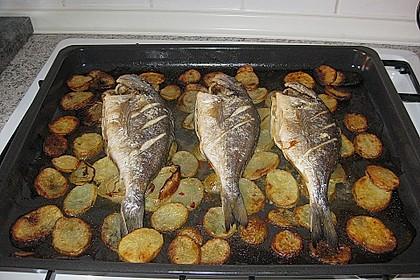 Gebackene Dorade mit scharfen Ofenkartoffeln 20
