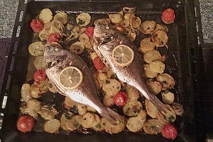 Gebackene Dorade mit scharfen Ofenkartoffeln 19