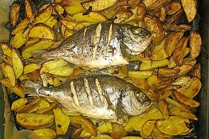 Gebackene Dorade mit scharfen Ofenkartoffeln 15