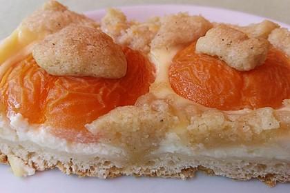 Tarte aux Abricots 65