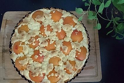 Tarte aux Abricots 64