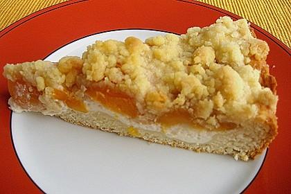 Tarte aux Abricots 57