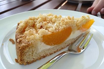 Tarte aux Abricots 37