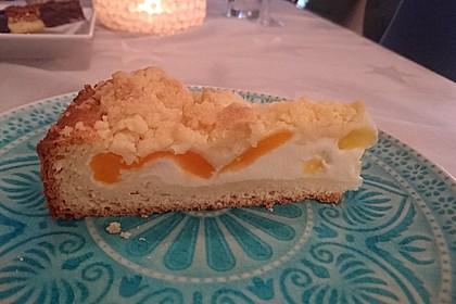 Tarte aux Abricots 7