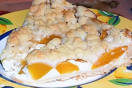 Tarte aux Abricots 36