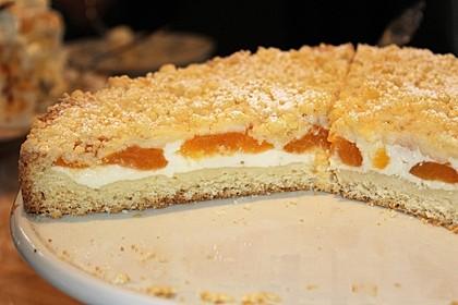 Tarte aux Abricots 8