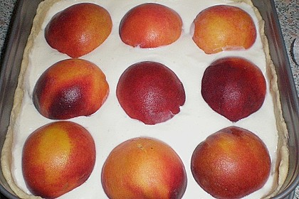 Tarte aux Abricots 109