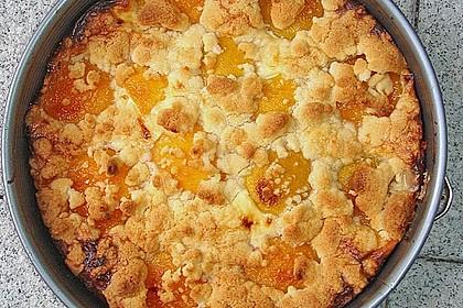 Tarte aux Abricots 70