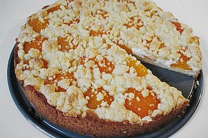 Tarte aux Abricots 69