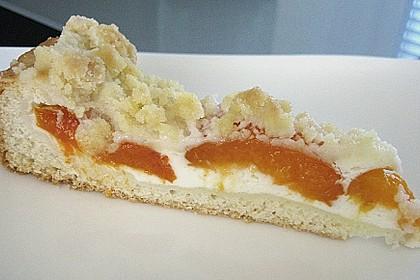 Tarte aux Abricots 92