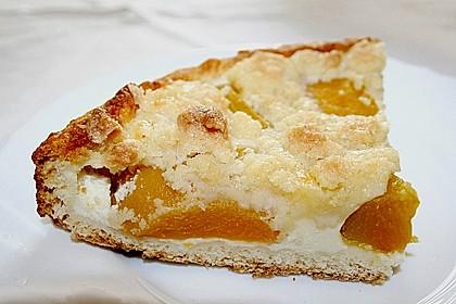 Tarte aux Abricots 58