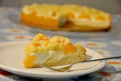Tarte aux Abricots 13
