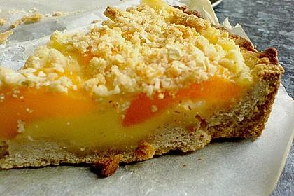 Tarte aux Abricots 120