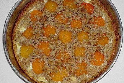 Tarte aux Abricots 147