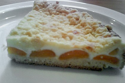 Tarte aux Abricots 145
