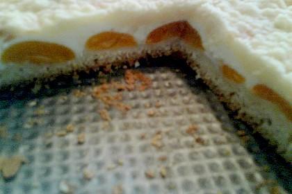 Tarte aux Abricots 144