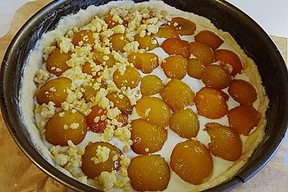 Tarte aux Abricots 91