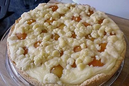 Tarte aux Abricots 121